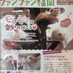 ファンファン福岡(9/10号)に掲載されました!